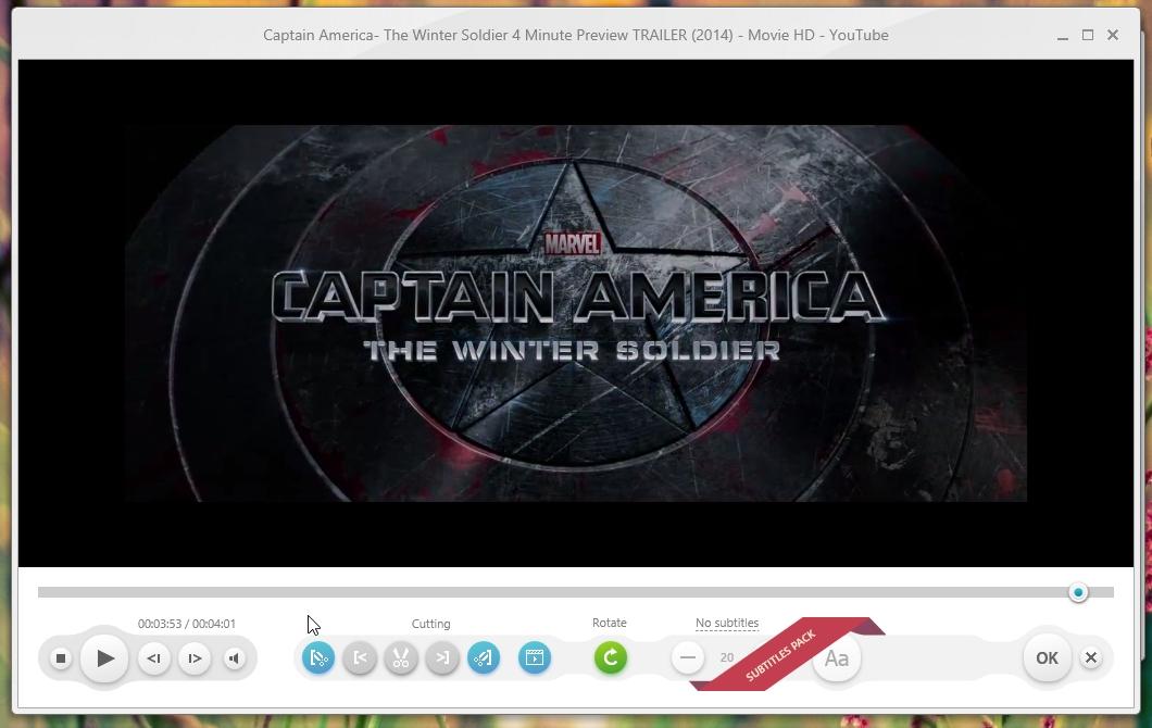 freemake video converter subtitles problem