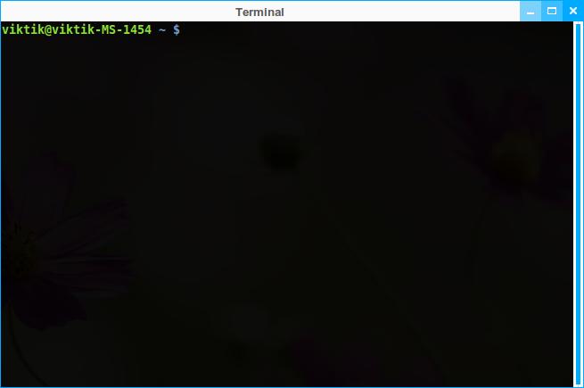 LINUX MINT 17 CINNAMON Terminal_001