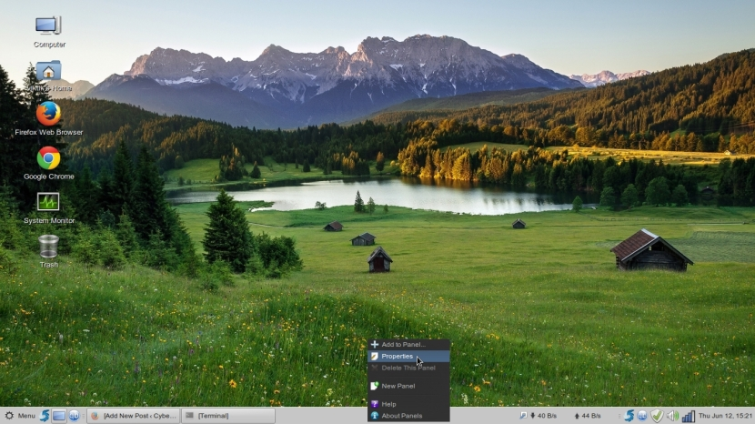 LINUX MINT 17 MATE Workspace 1_035